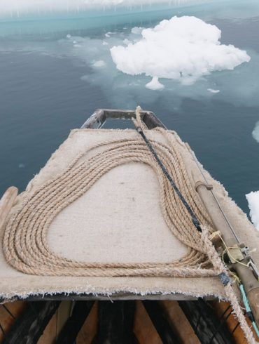image-wide-arctic-exhibition